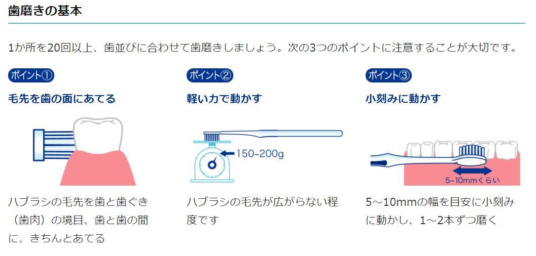 システマ 正しい歯磨きの仕方