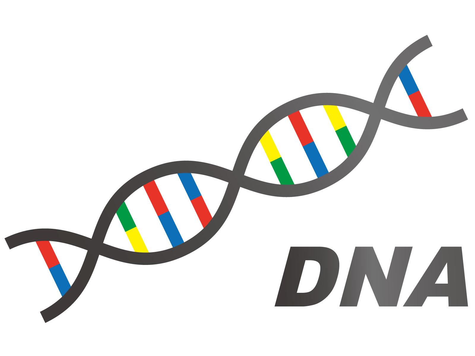 遺伝DNA